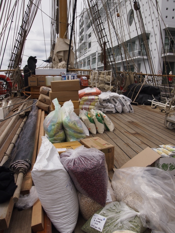 Mizen deck provisions ready for stowing below on board Europa, Auckland Harbour